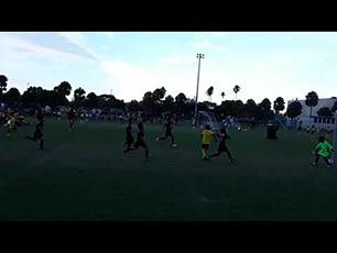 Owasi Hannibald U8 Miami, FL 7/2018